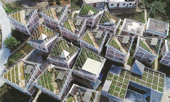 图为屋顶设计成梯田形状,依山势起伏,又兼顾房屋采光.刘忠俊 摄