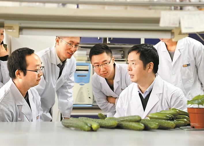 基因科学家抢占国际生物育种新高地